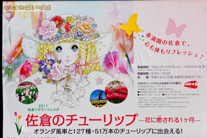 daizukanIMG_0248-1.jpg