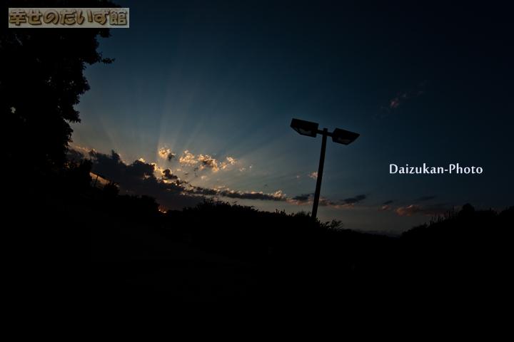 daizukanIMG_0289-1.jpg