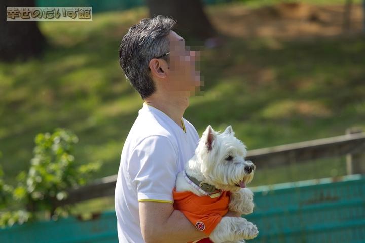 daizukanIMG_0471-1.jpg