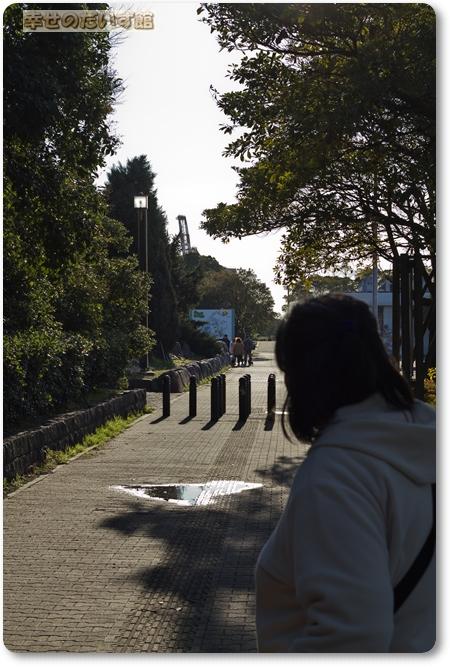 daizukanIMG_4610.jpg