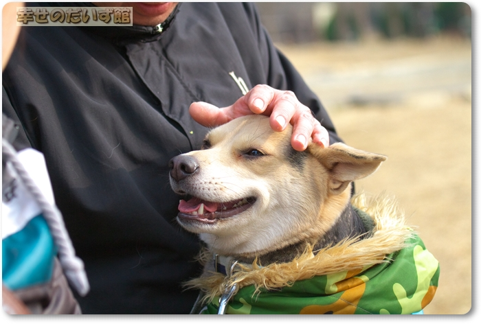 daizukanIMG_5670.jpg