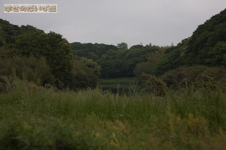 daizukan_MG_0173-1.jpg