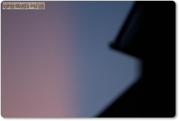 daizukandaizukan-photo-2401.jpg