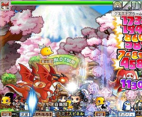 Maple03130.jpg