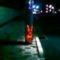 練馬区の電柱 - ウッドソン