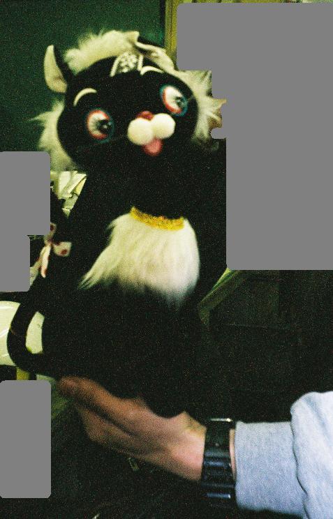 昭和モンド-猫