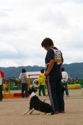 徳島JKC 043