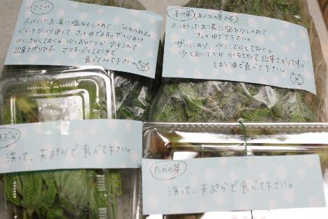 2011_05030040.jpg