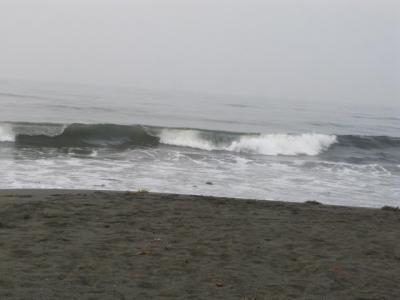 ★6:20AM 辻堂の波★