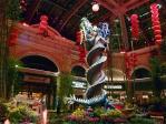 12-01-19 Las Vegas-1