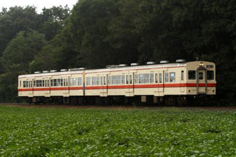 1002-2.jpg