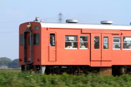 1009-81.jpg