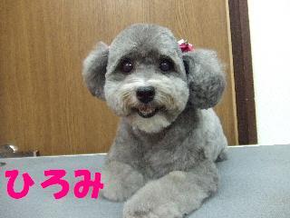 2008_10250084.jpg