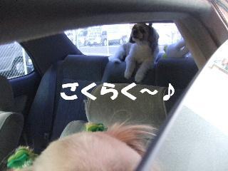 2008_10280046.jpg