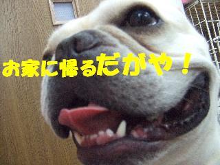 2008_10280054.jpg