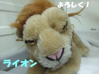 2008_11040089.jpg
