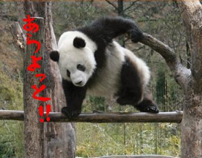 パンダ刑事(デカ)