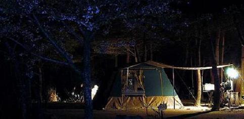 キャンプだキャンプだぁ!