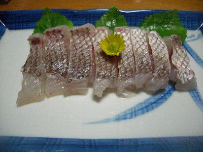 真鯛湯引き刺身
