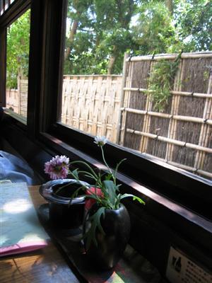 窓際からの風景