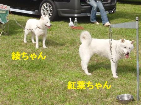 7.24綾ちゃん&紅葉ちゃん