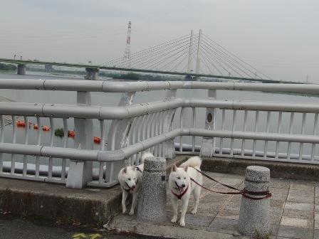 7.28管理橋の真ん中で