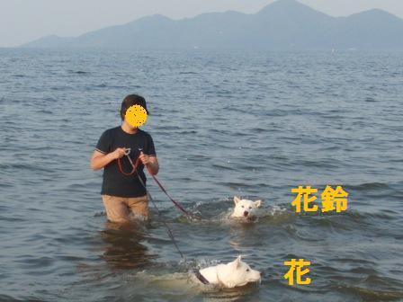 8.28湖水浴2