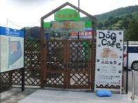 8.28道の駅のドッグカフェ