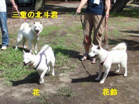 8.28琵琶湖で遊ぼう会2