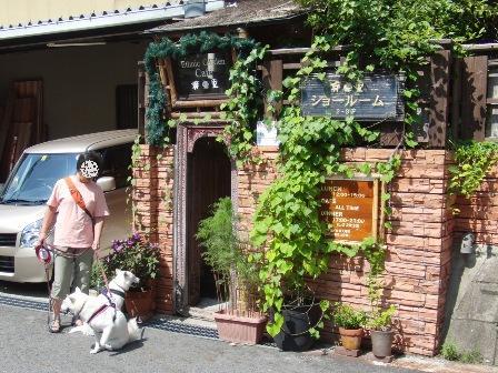 8.29ドッグカフェ芽亜里