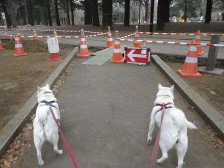 2012.2.17代々木公園1
