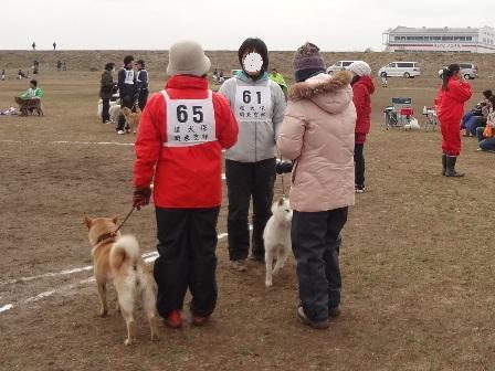 2012.3.4 ごあいさつ