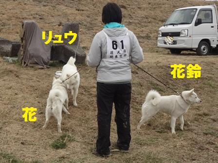 2012.3.4 親子の再会1