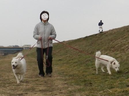 2012.3.3 土手を歩く