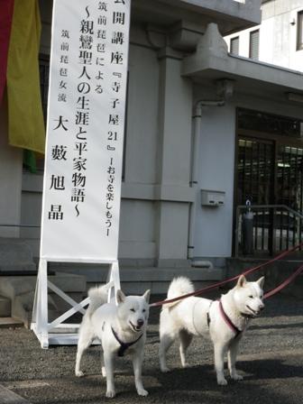 2012.3.20 お墓参り3