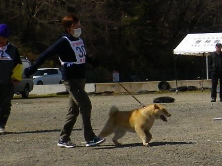 2012.3.25 風太君の展覧