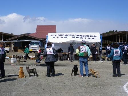 2012.3.25 仔犬一部牡