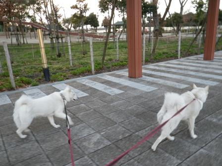 2012.3.31 刈谷PA5