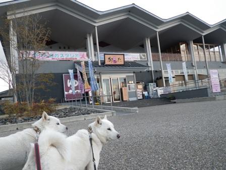 2012.3.31 刈谷PA3・温泉かきつばた