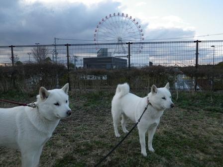 2012.3.31 刈谷PA2