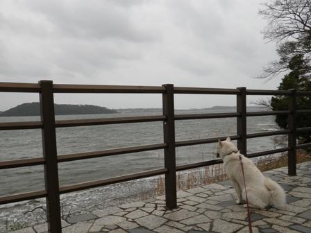 2012.3.31 浜名湖SA3