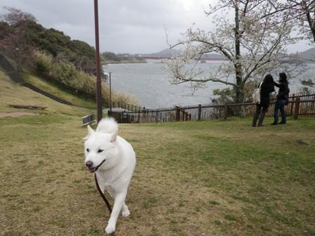 2012.3.31 浜名湖SA1