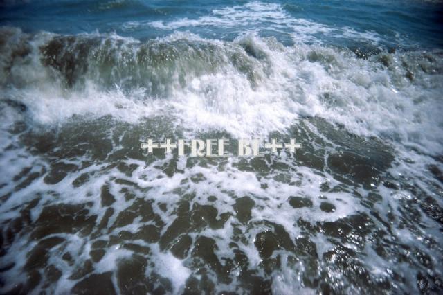 16_20080905213025.jpg
