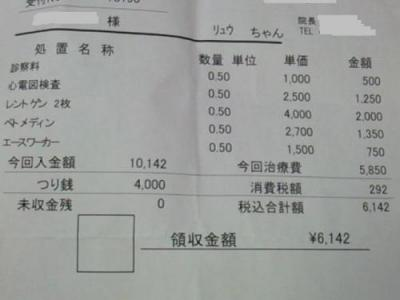 NEC_4438s[1]
