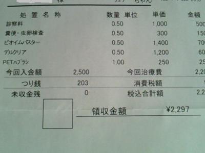 NEC_4459.jpg