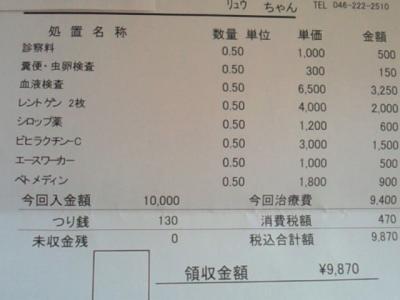 NEC_4507.jpg