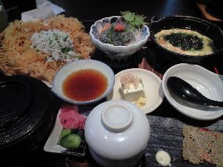takoshima10-16-08-5.jpg