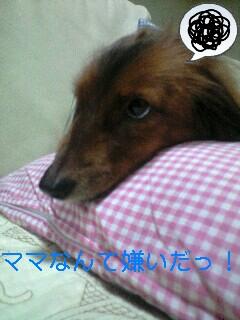 090425_1707~0001-0001