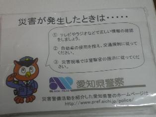 P1020987.jpg