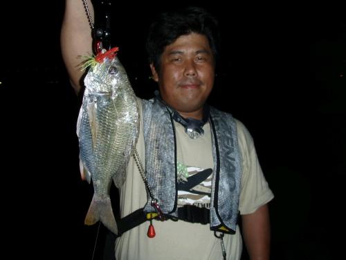2008.8.1淀川キビレ3
